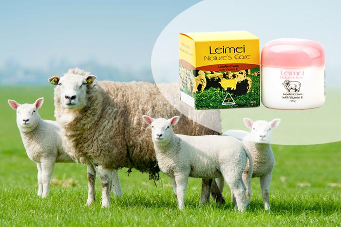 Ellie Owl & Lost Lamb (Elc) French V